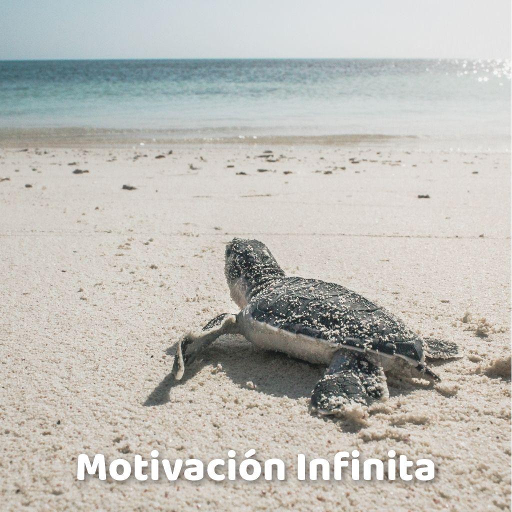 Motivación Infinita